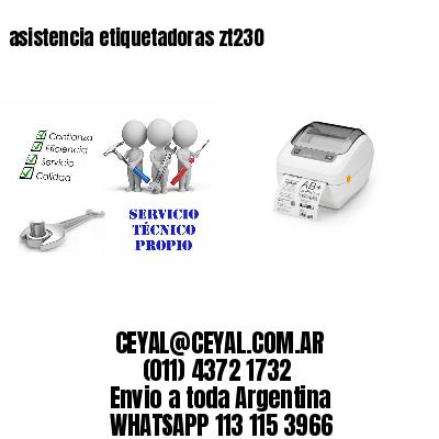 asistencia etiquetadoras zt230